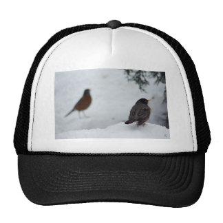 Reminiscing Robin Trucker Hat