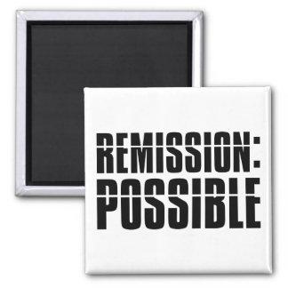 Remisión posible imán de frigorífico