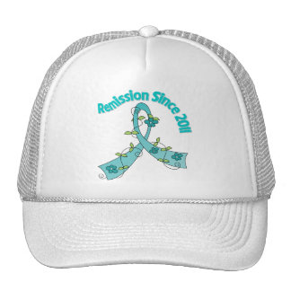 Remission Since 2011 Ovarian Cancer Mesh Hat