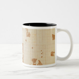 Remnant of a cadastre Two-Tone coffee mug