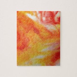 Remolino abstracto caliente puzzle con fotos