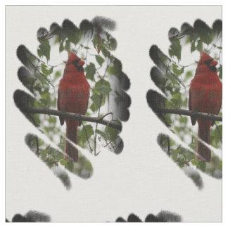 Remolino cardinal telas