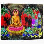 Remolino de Buda - carpeta