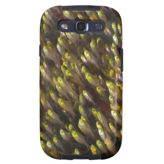 Remolino de los barrenderos de oro (Parapriacanthu Samsung Galaxy S3 Fundas