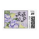 Remolino floral del Hydrangea de la lila del franq