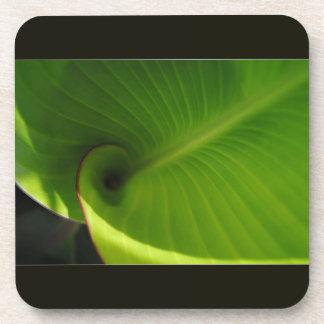 Remolino verde de la hoja posavaso