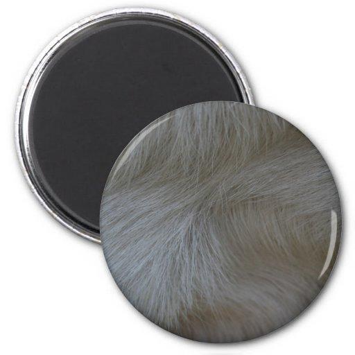 Remolinos del modelo blanco del pelo de la cabra imán redondo 5 cm