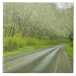 Remote highway through forest large square tile