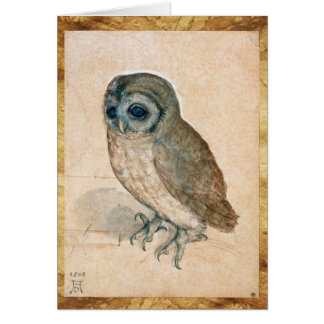 RENAISSANCE ANIMAL DRAWINGS / THE OWL CARD