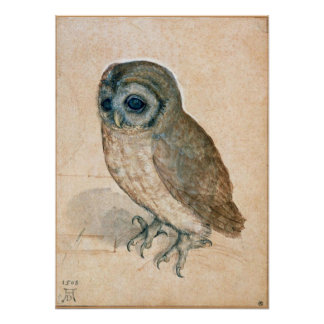 RENAISSANCE ANIMAL DRAWINGS / THE OWL POSTER