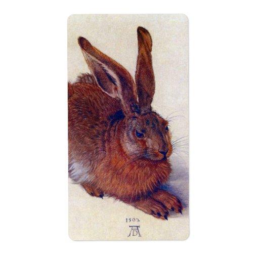 Renaissance Art, Young Hare by Albrecht Durer Label