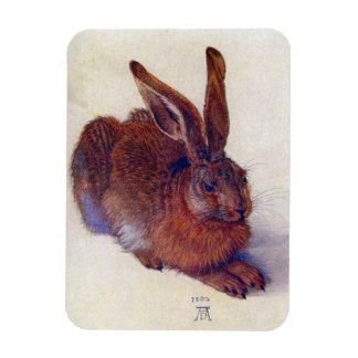 Renaissance Art, Young Hare by Albrecht Durer Rectangular Photo Magnet
