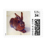 Renaissance Art, Young Hare by Albrecht Durer Stamp