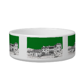 Renaissance building green bowl