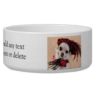 Renaissance Chihuahua in Red Velvet Bowl