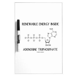 Renewable Energy Inside Adenosine Triphosphate Dry-Erase Board