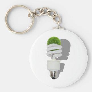 RenewableResources062210Shadows Key Chain