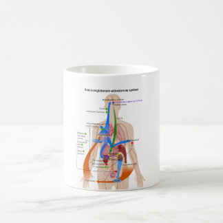 Renin Angiotensin system (RAS) Diagram Coffee Mug
