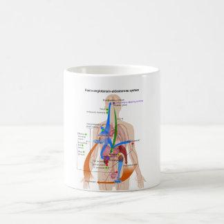 Renin Angiotensin system (RAS) Diagram Classic White Coffee Mug