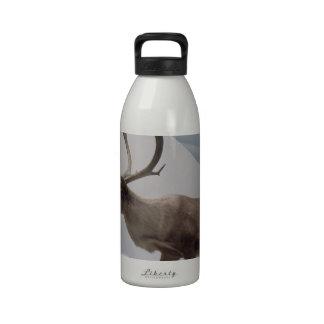 Reno caribú botellas de agua reutilizables