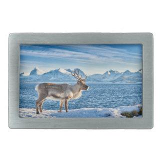 Reno en paisaje nevado en el mar hebillas cinturón rectangulares