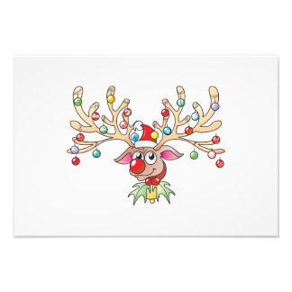 Reno lindo de Rudolf con las tarjetas de las luces Impresión Fotográfica