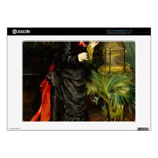 Renoir by Pierre Renoir Decal For Acer Chromebook