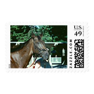 Renuncie el caballo de carreras 1977 estampilla