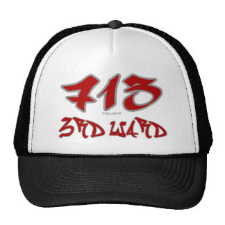 Rep 3rd Ward (713) Hat