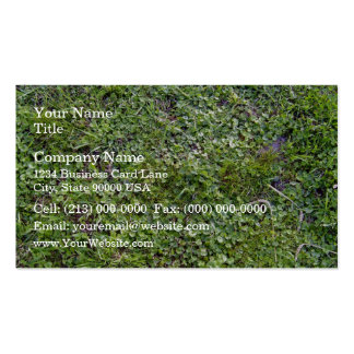 Repetitive Plants Textures Double-Sided Standard Business Cards (Pack Of 100)