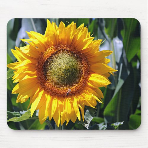 Replace Sunflower Photo Horizontal Make Personal Mouse Pad