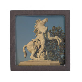 Replica of one of the two 'Marly Horses' originall Gift Box
