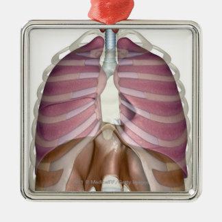 representación 3d del sistema respiratorio adorno navideño cuadrado de metal