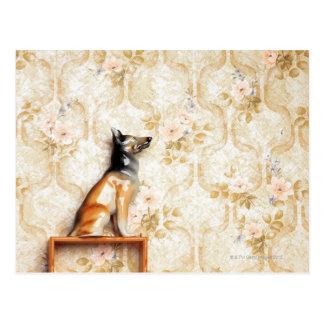 Representación animal, artículo de la novedad, est postal
