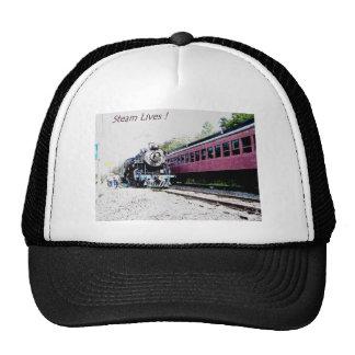Representación de Digitaces del tren del vapor, Gorros