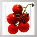 Representación de lienzo tomates en el vidrio de póster