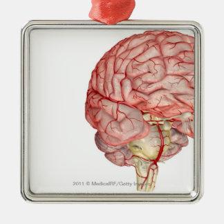 Representación de Realitic del cerebro humano Adorno Navideño Cuadrado De Metal