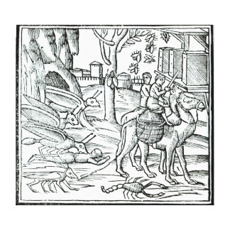 Representation of the Plague, 1572 Stretched Canvas Print