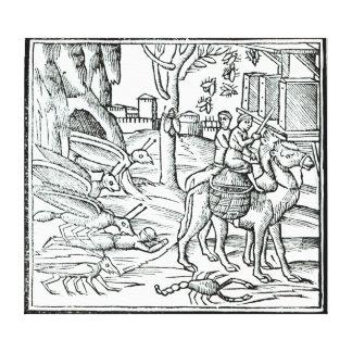 Representation of the Plague, 1572 Canvas Print