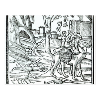Representation of the Plague, 1572 Postcard