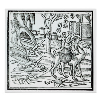 Representation of the Plague, 1572 Poster