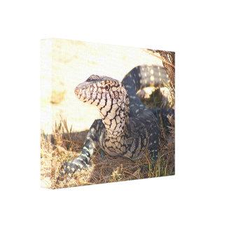 Reptil en el desierto, Australia Impresión En Lienzo