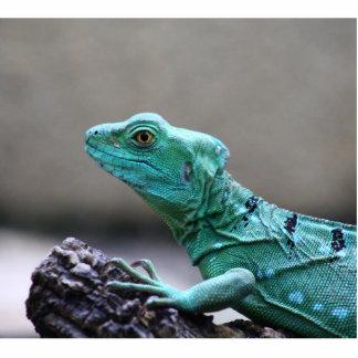 Reptil Fotoescultura Vertical