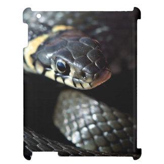 Reptil temático