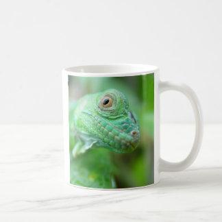 Reptil verde del lagarto de la iguana en la taza d