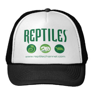 Reptile Anniversary #4 Hat