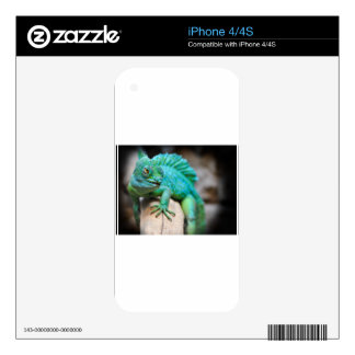 reptile decals for iPhone 4S