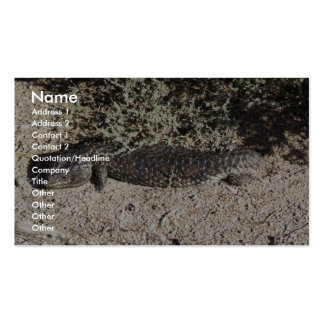 Reptile Hiding Under Branches Of Tree Business Card