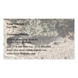 Reptile Hiding Under Branches Of Tree Business Card Template
