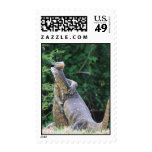 Reptile Hugs Postage Stamps